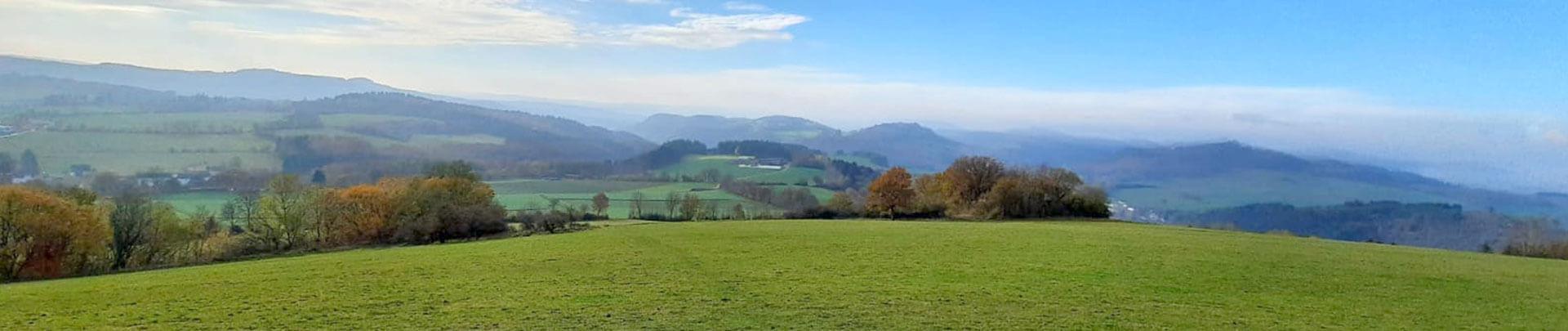 Regionale Landschaft